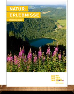 Baden-Württemberg Tourismusmarketing